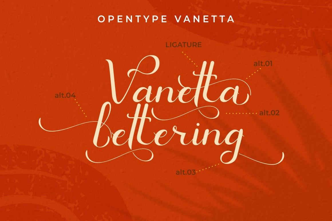 Vanetta Script example image 6