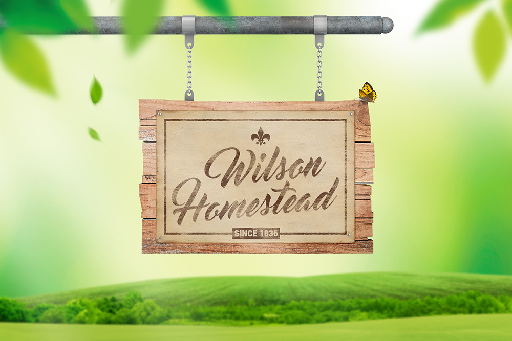 Hanging Wooden Sign Mockup example image 2