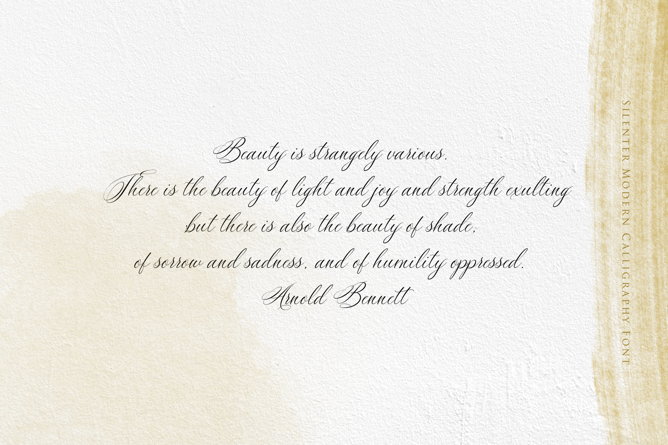 Silenter // Modern Calligraphy Font example image 4