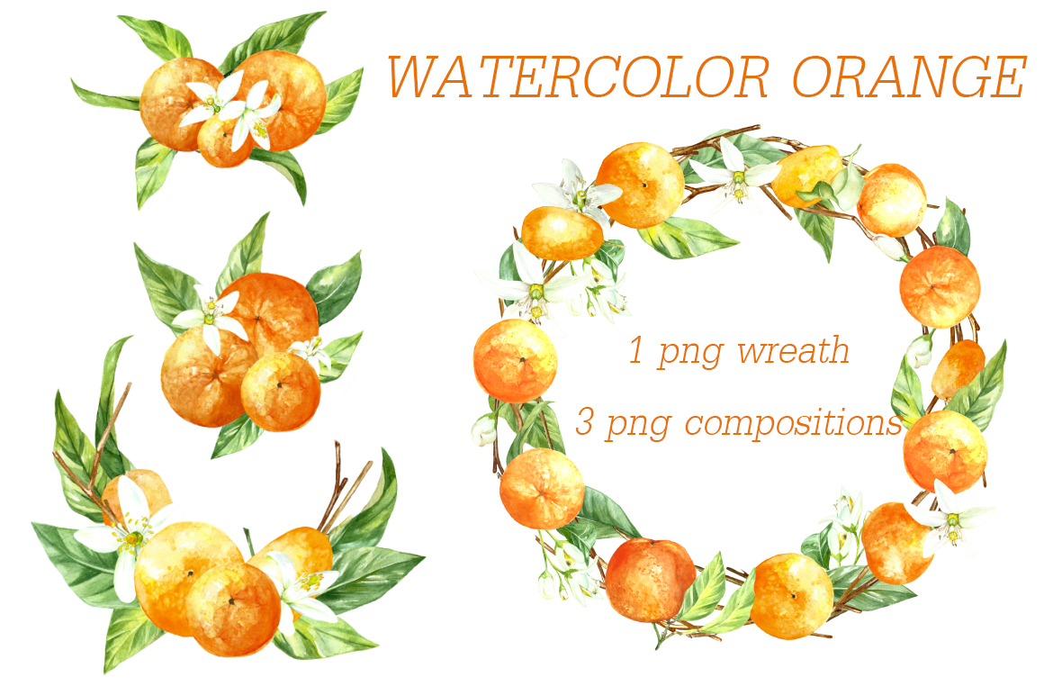 watercolor orange fruit illustration example image 3