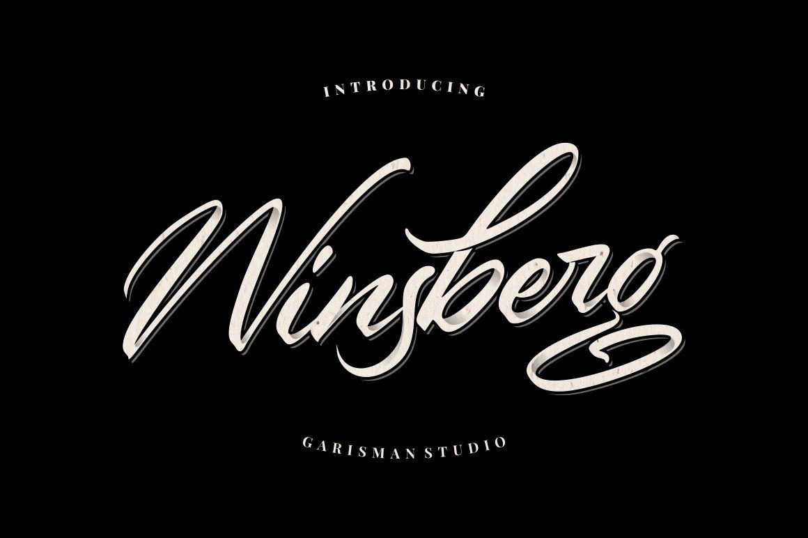 Winsberg example image 1