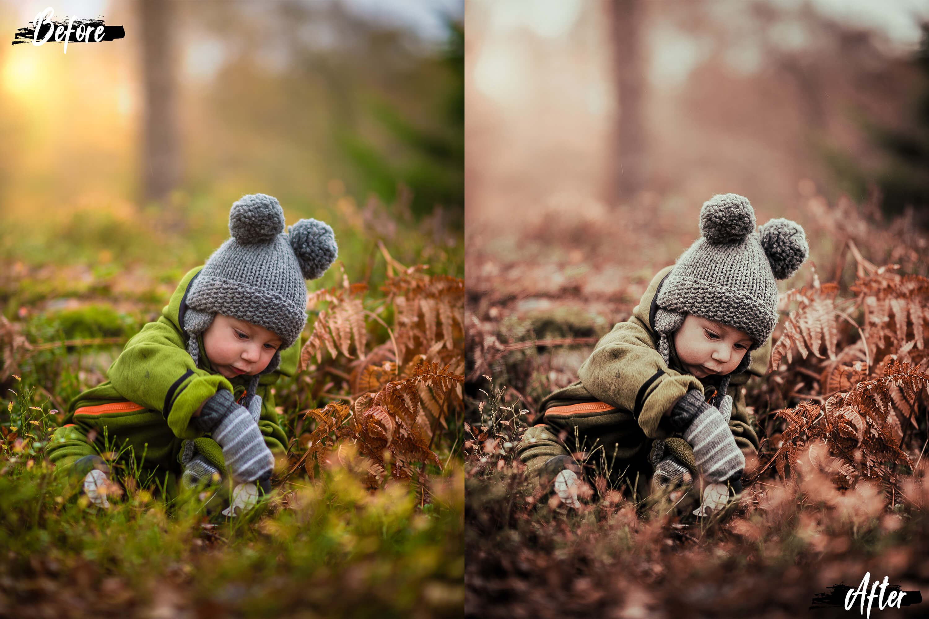 5 Dreamy Autumn Photoshop Actions, ACR and LUT presets example image 3