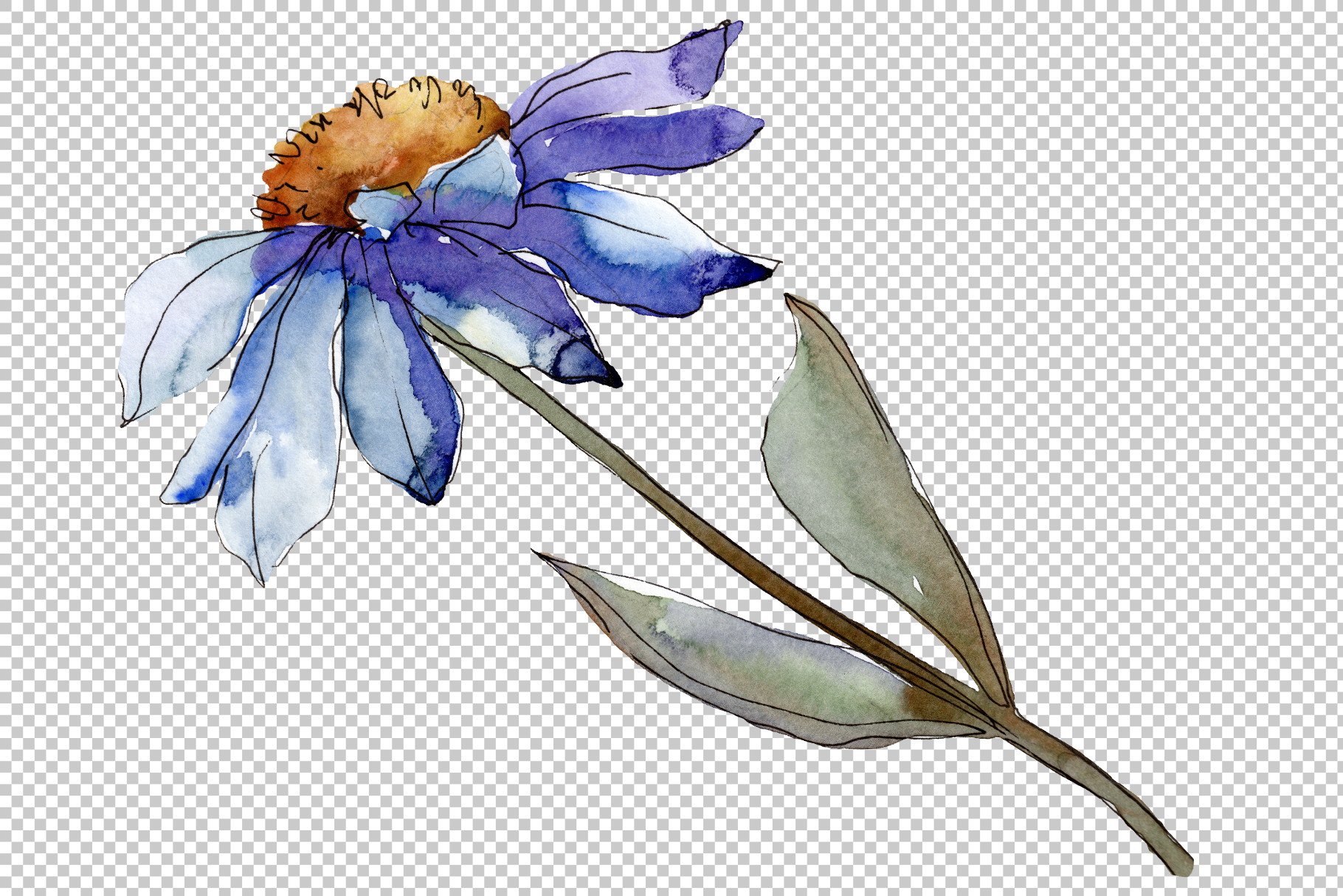 Bouquet blue of asters and daisies watercolor png example image 4