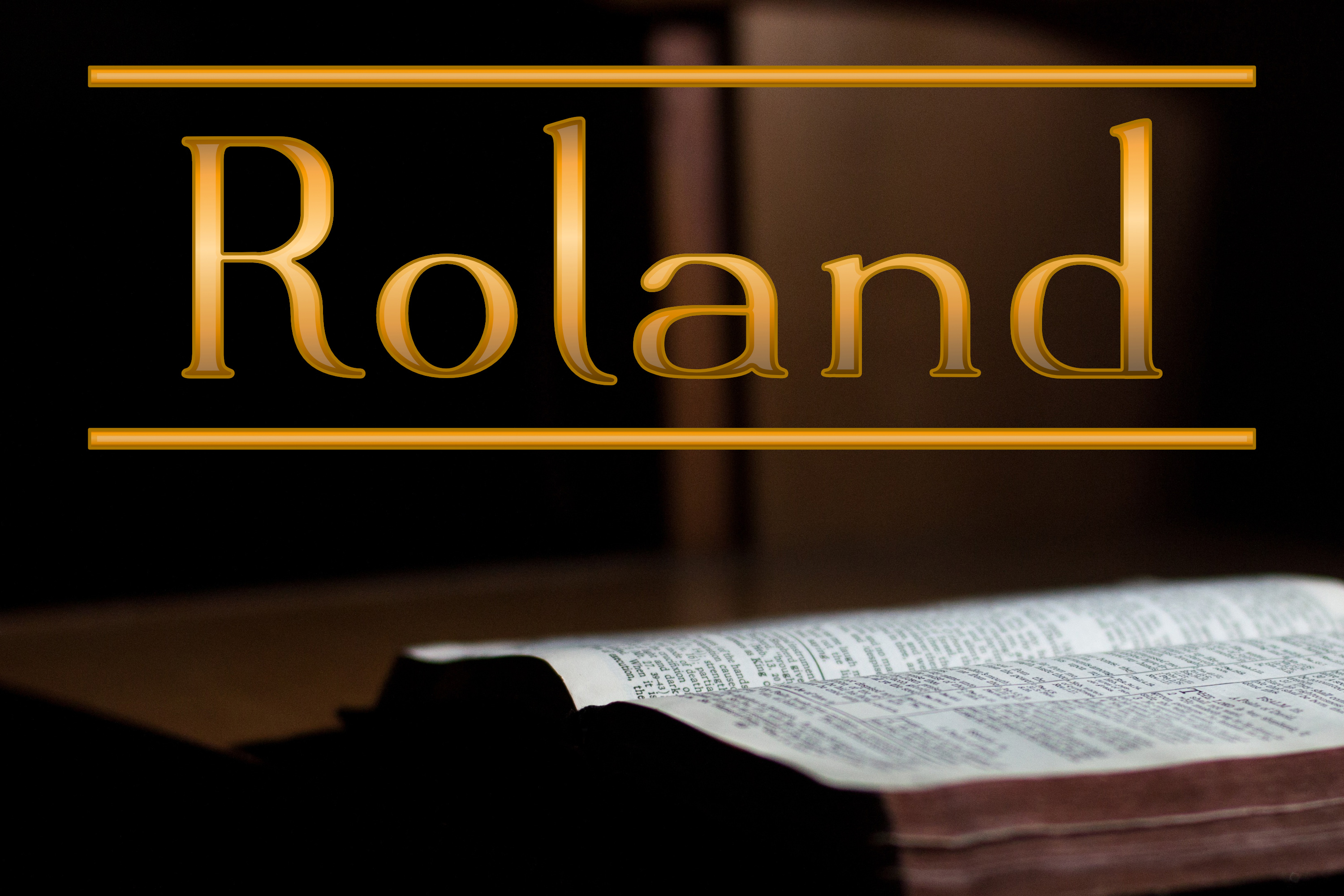 Roland example image 1