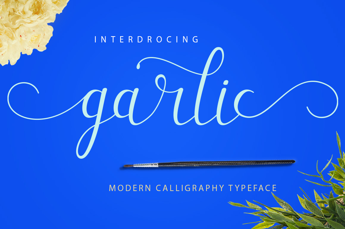 Garlic example image 1