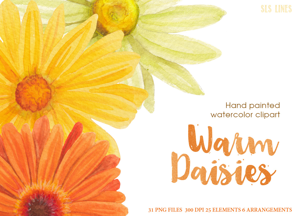 Warm Yellow & Orange Daisies, Watercolor PNG example image 5