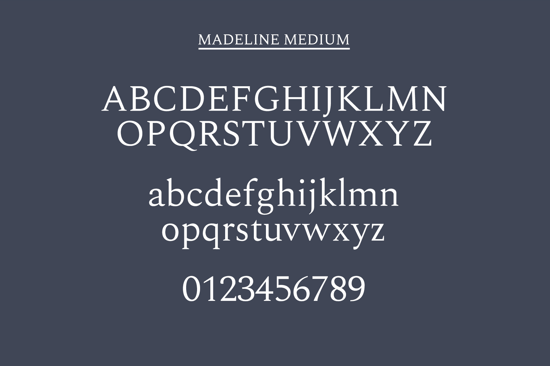 Madelin Serif Font Family Pack example image 10