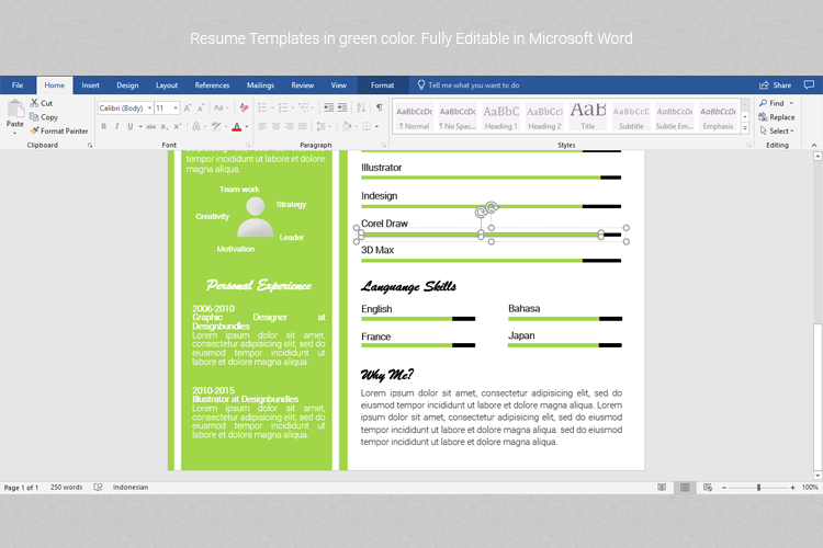 A4 Resume Templates Word example image 3