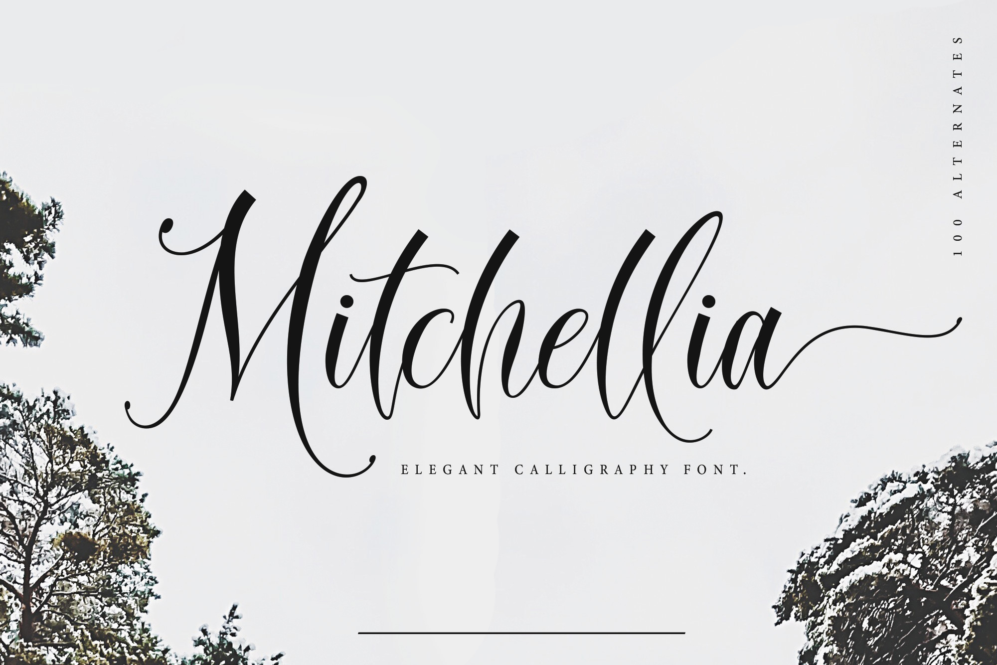 Mitchellia Script - Elegant Script example image 1