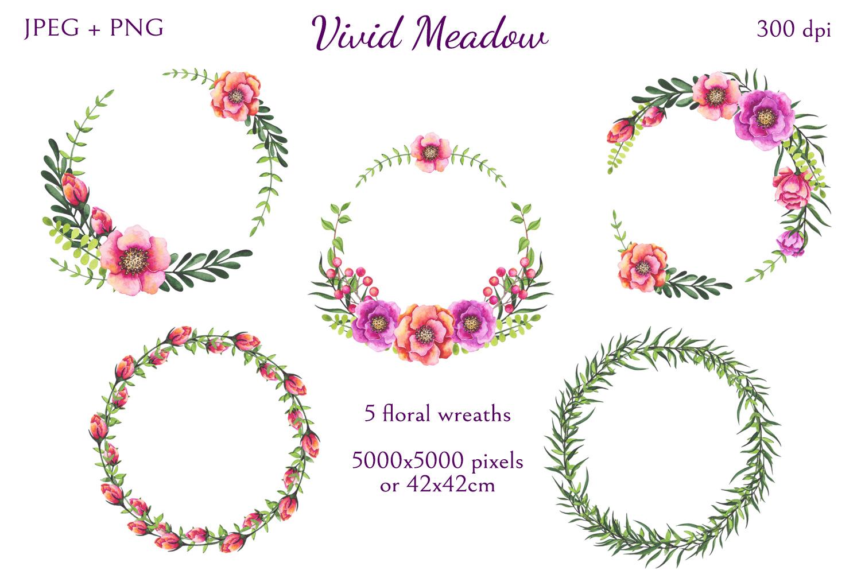 Vivid Meadow example image 9