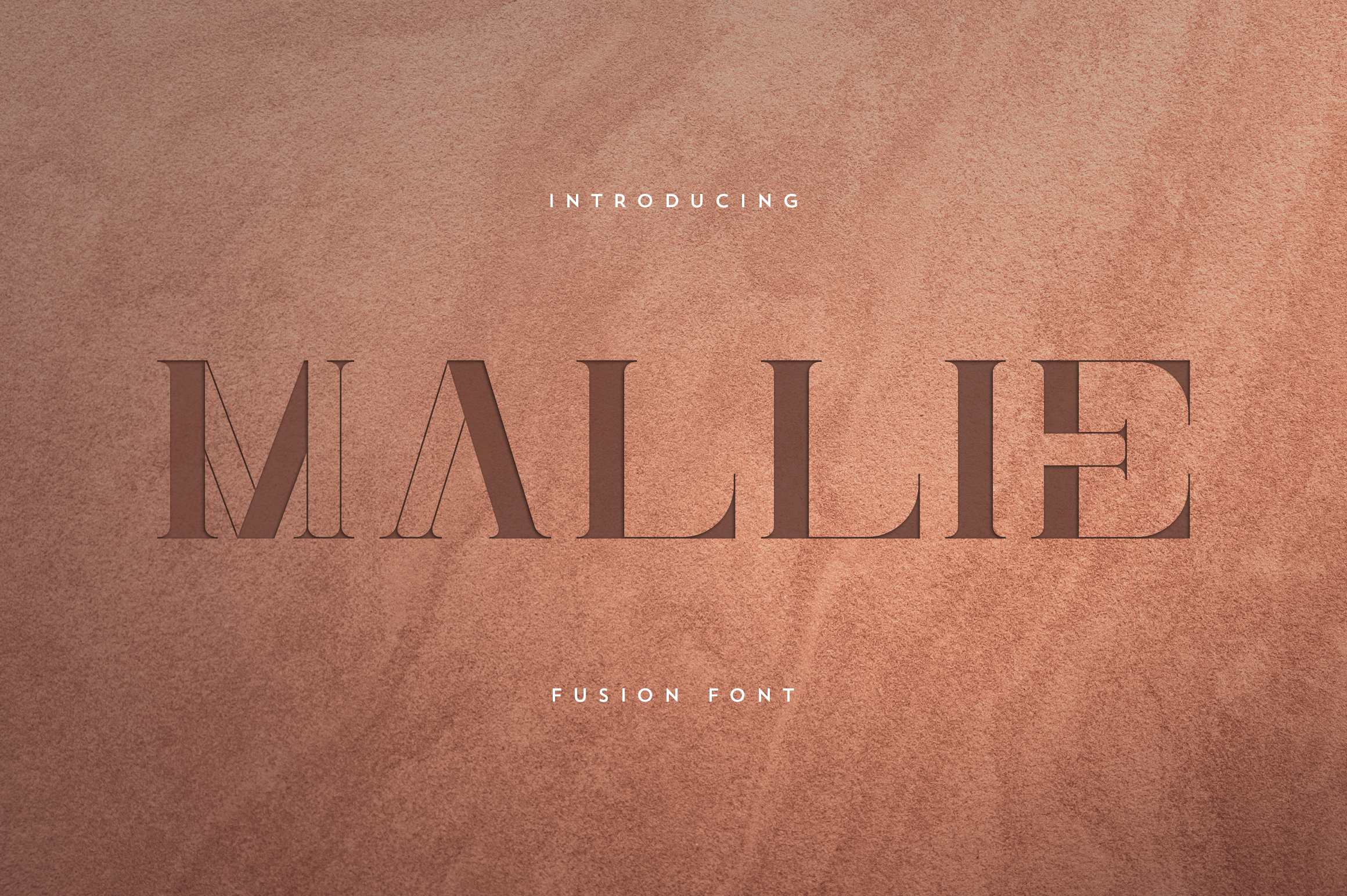 Mallie - Fusion font example image 1