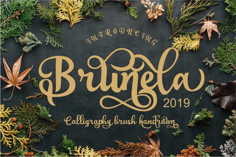 Brunela Beautyful Calligraphy brush scripts font example image 1