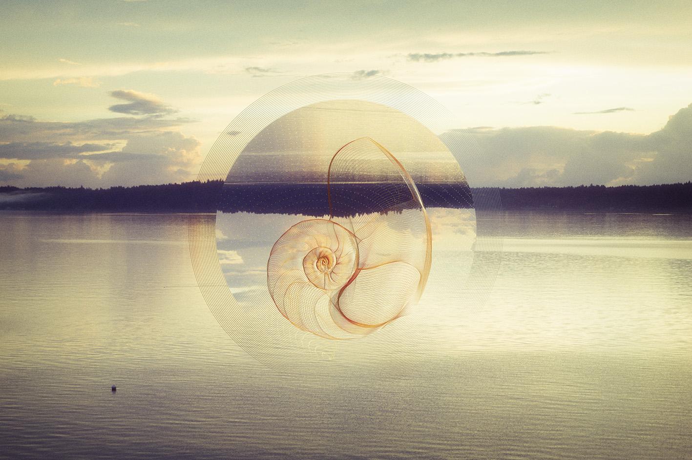 Ethereal Seashells example image 5