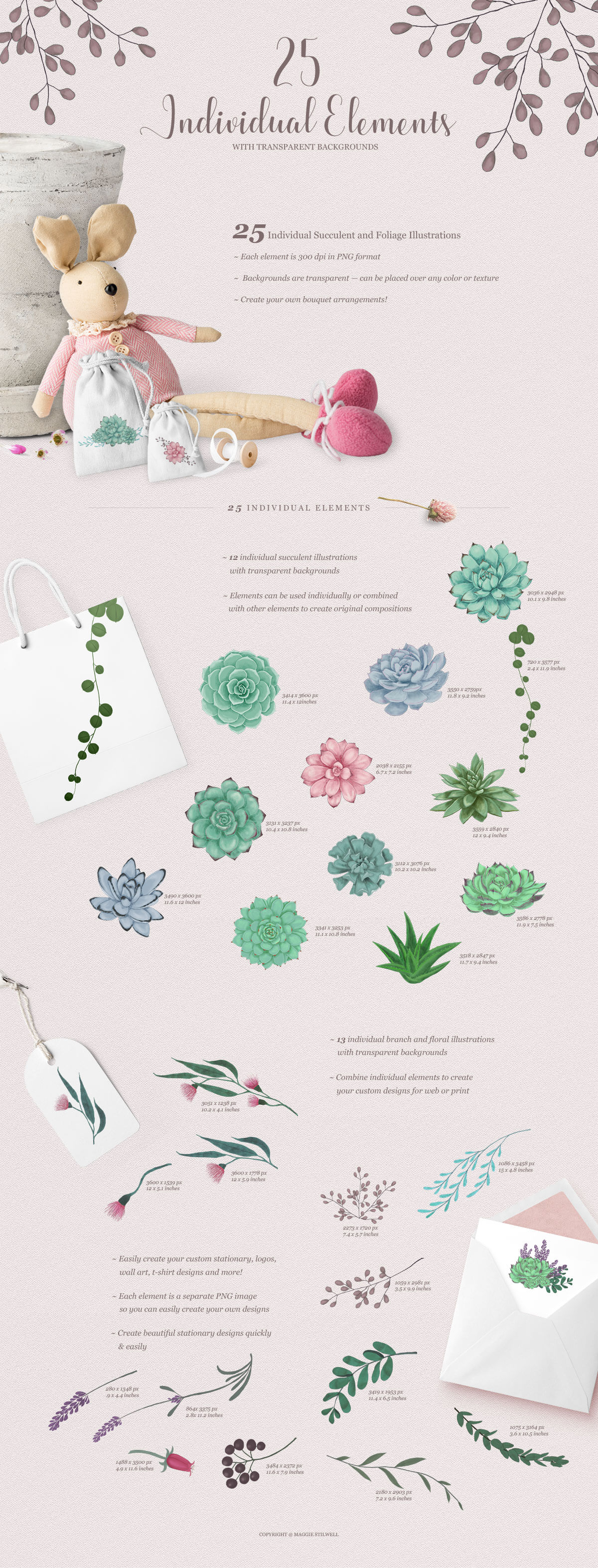 Sweet Succulents Design Set example image 2