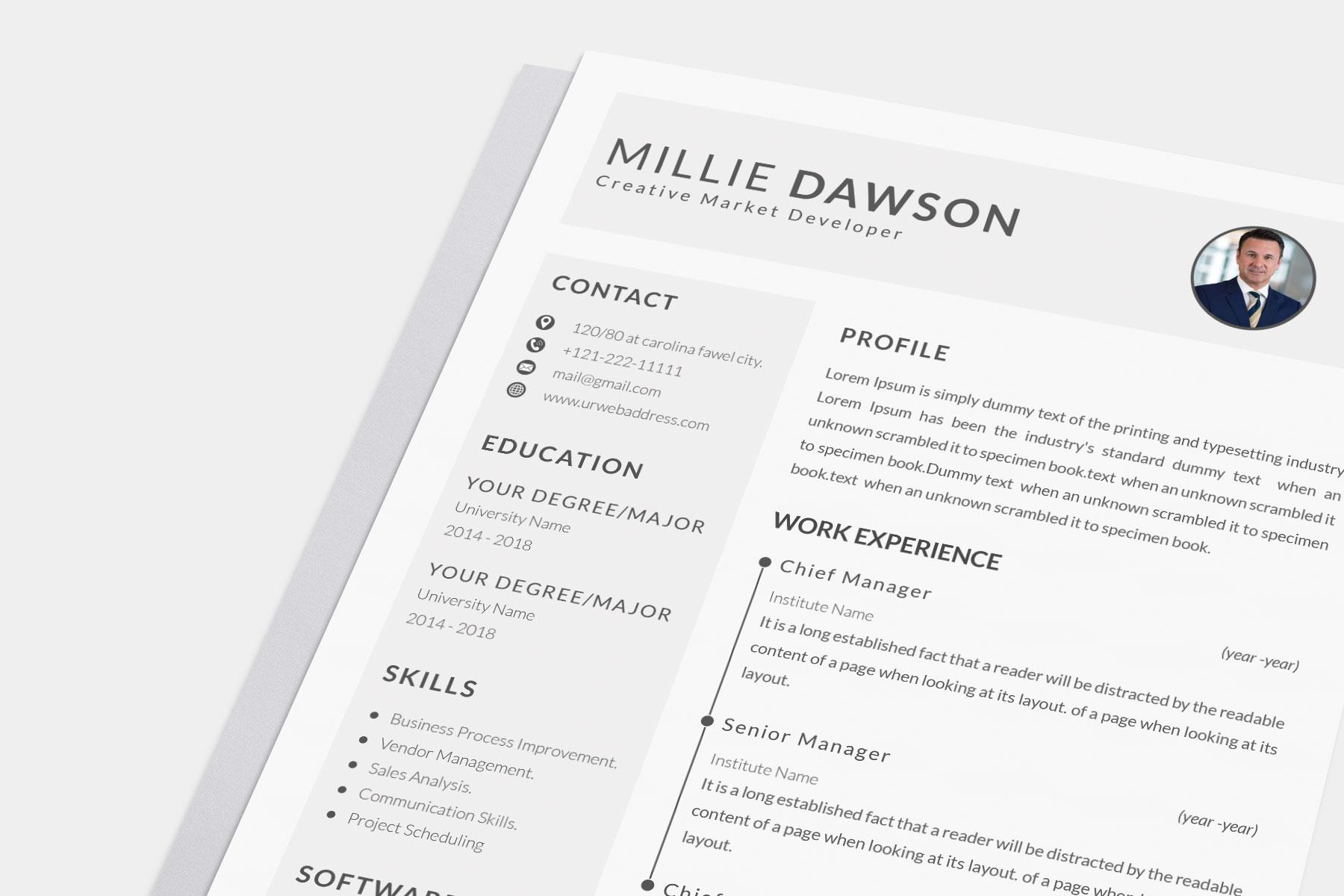 Professional Cv Resume Bonus business card Word/PSD,AI example image 4