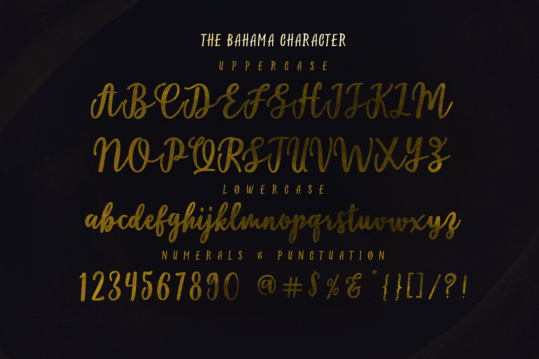Bahama Script example image 6
