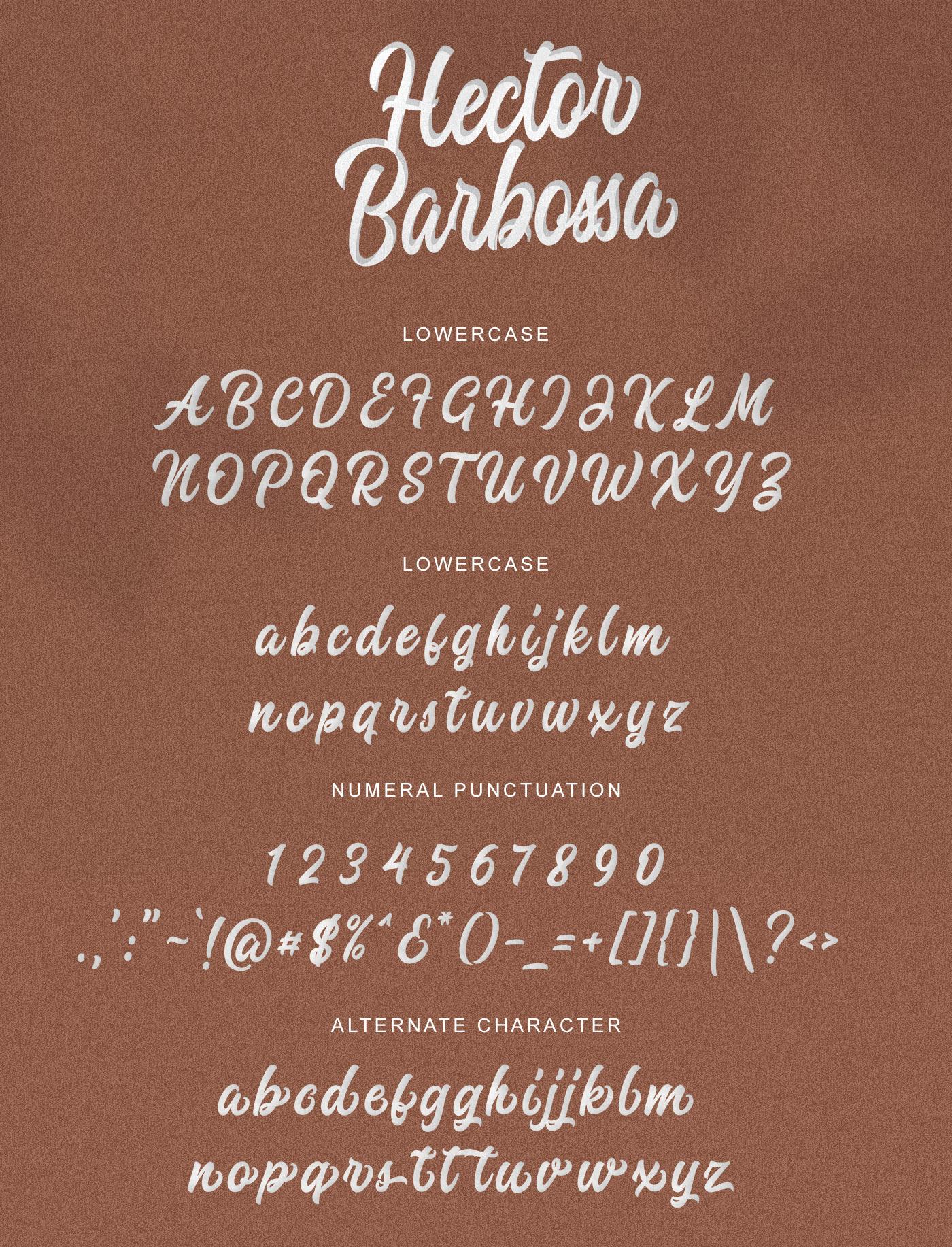 Hector Barbossa example image 7