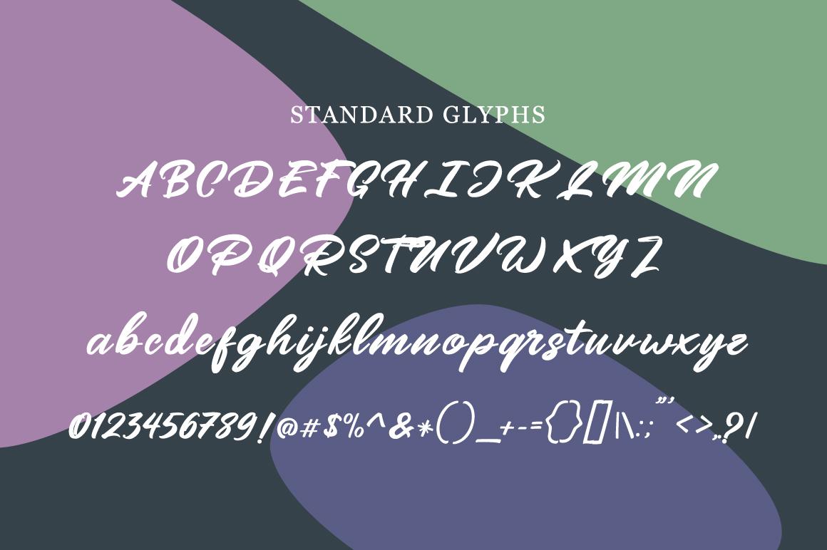 Mangotea - Script Font example image 6