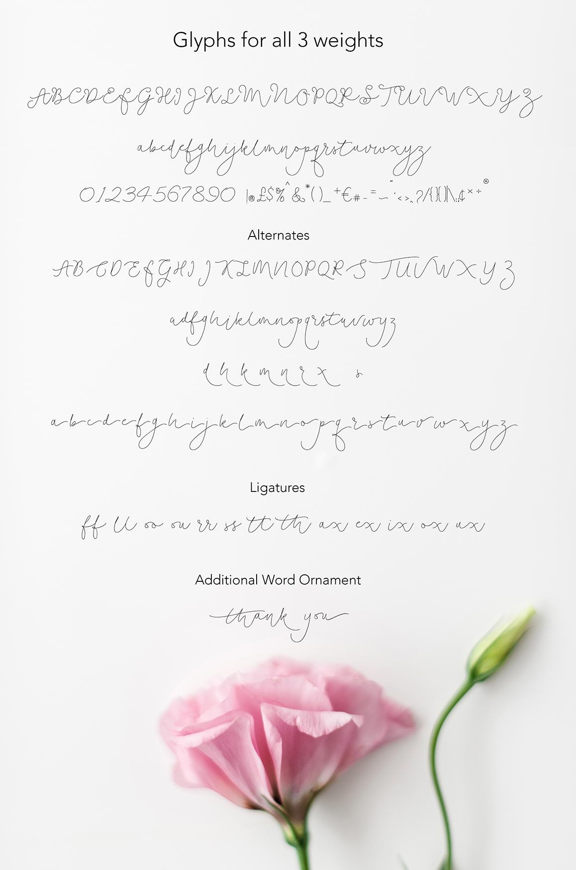 Soft Whisperings wedding font example image 12