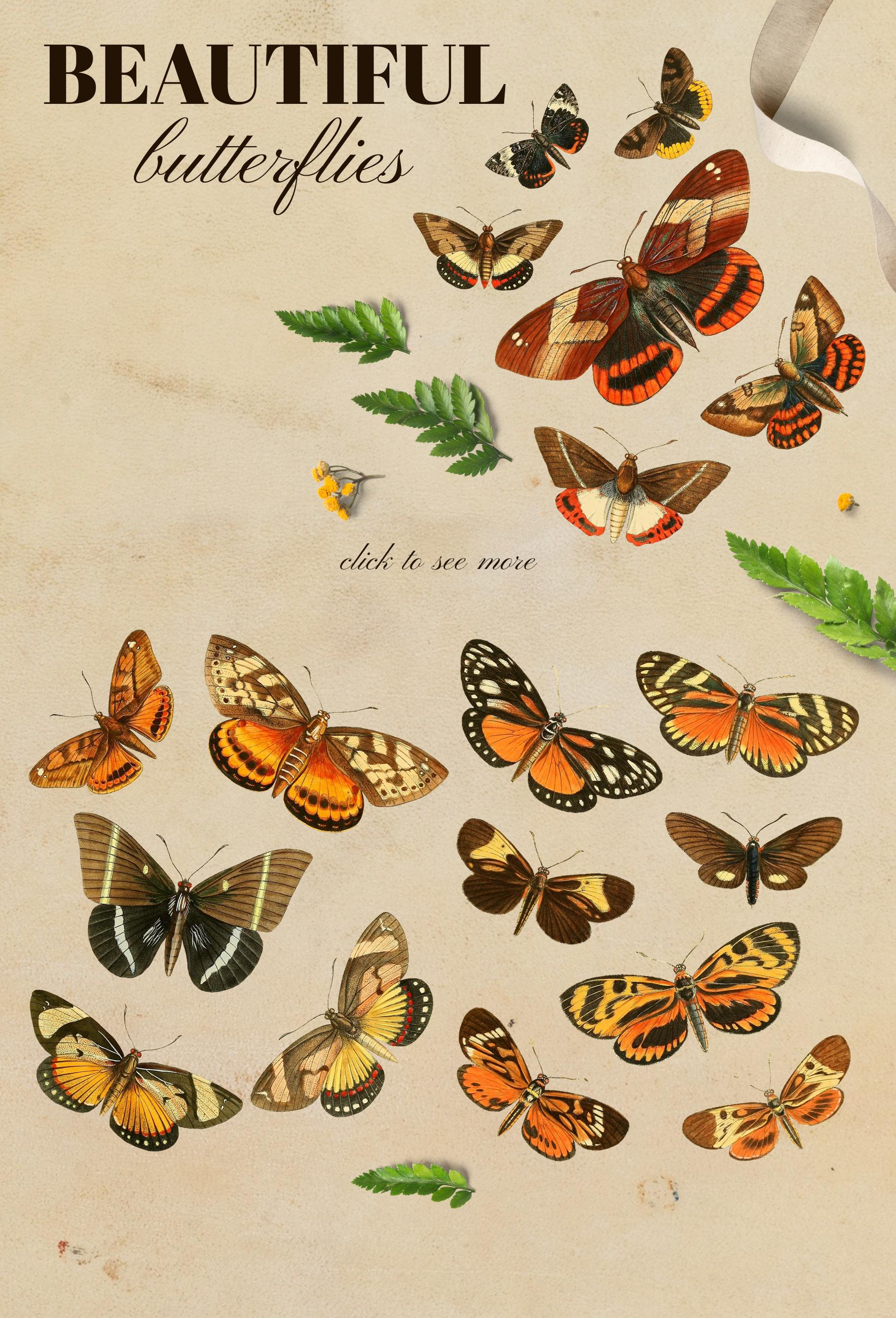 Vintage exotic herbarium design set example image 5