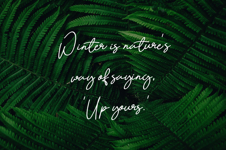 Quetzalli signature font example image 4