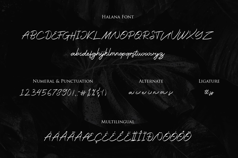 Halana Font example image 7