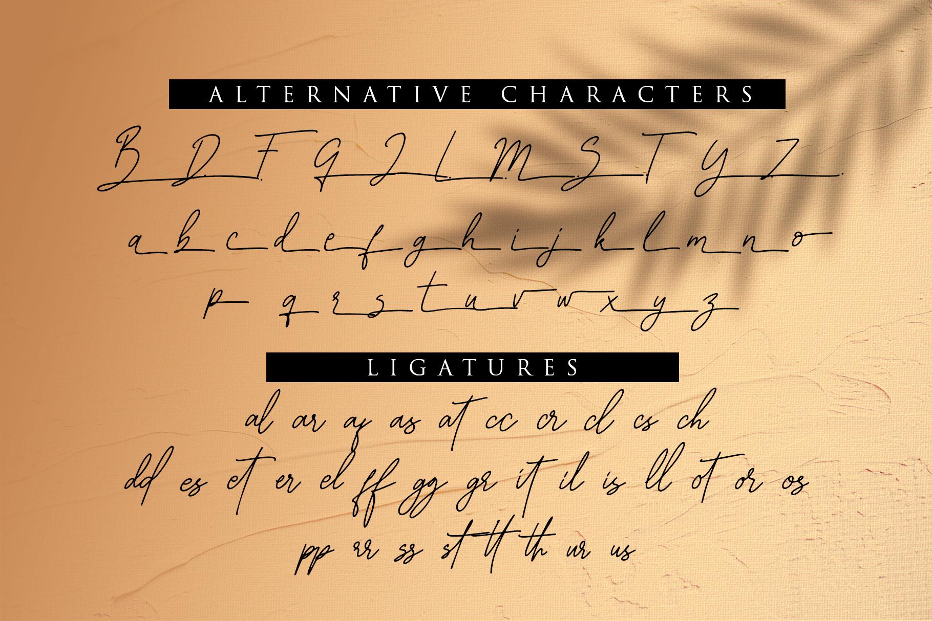 Graciast - Signature Font example image 12