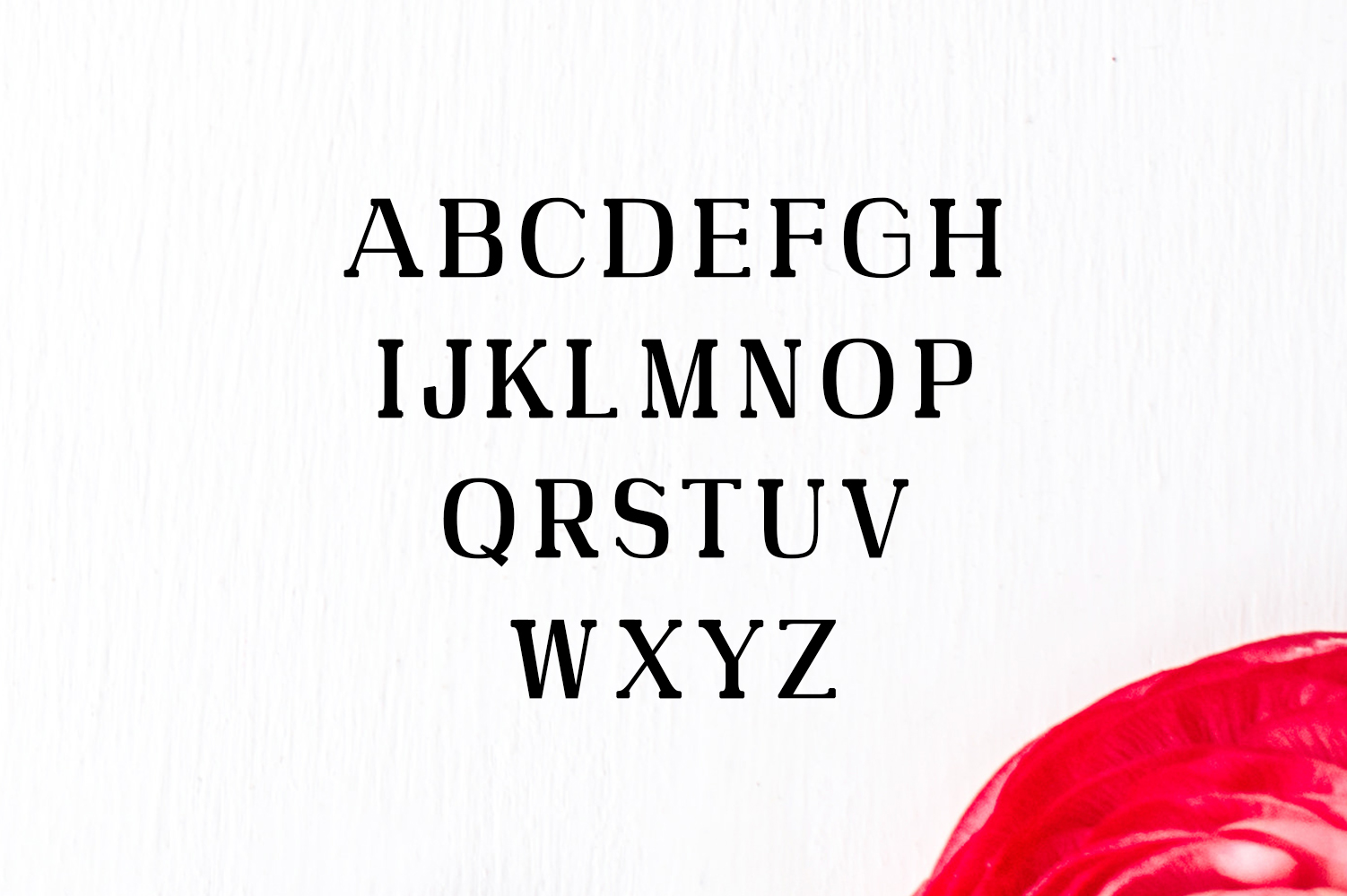 Adie High Class Serif Typeface example image 2