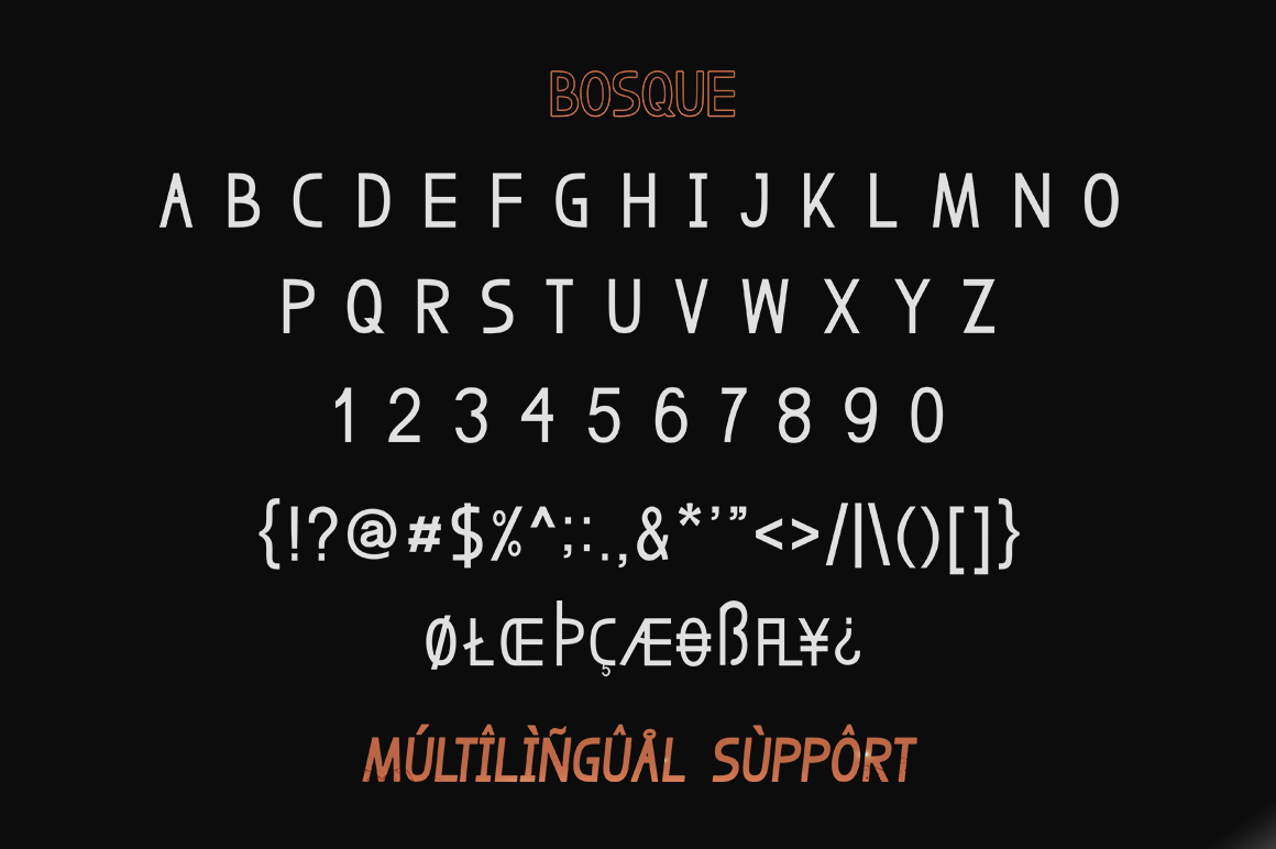Bosque Typeface example image 7