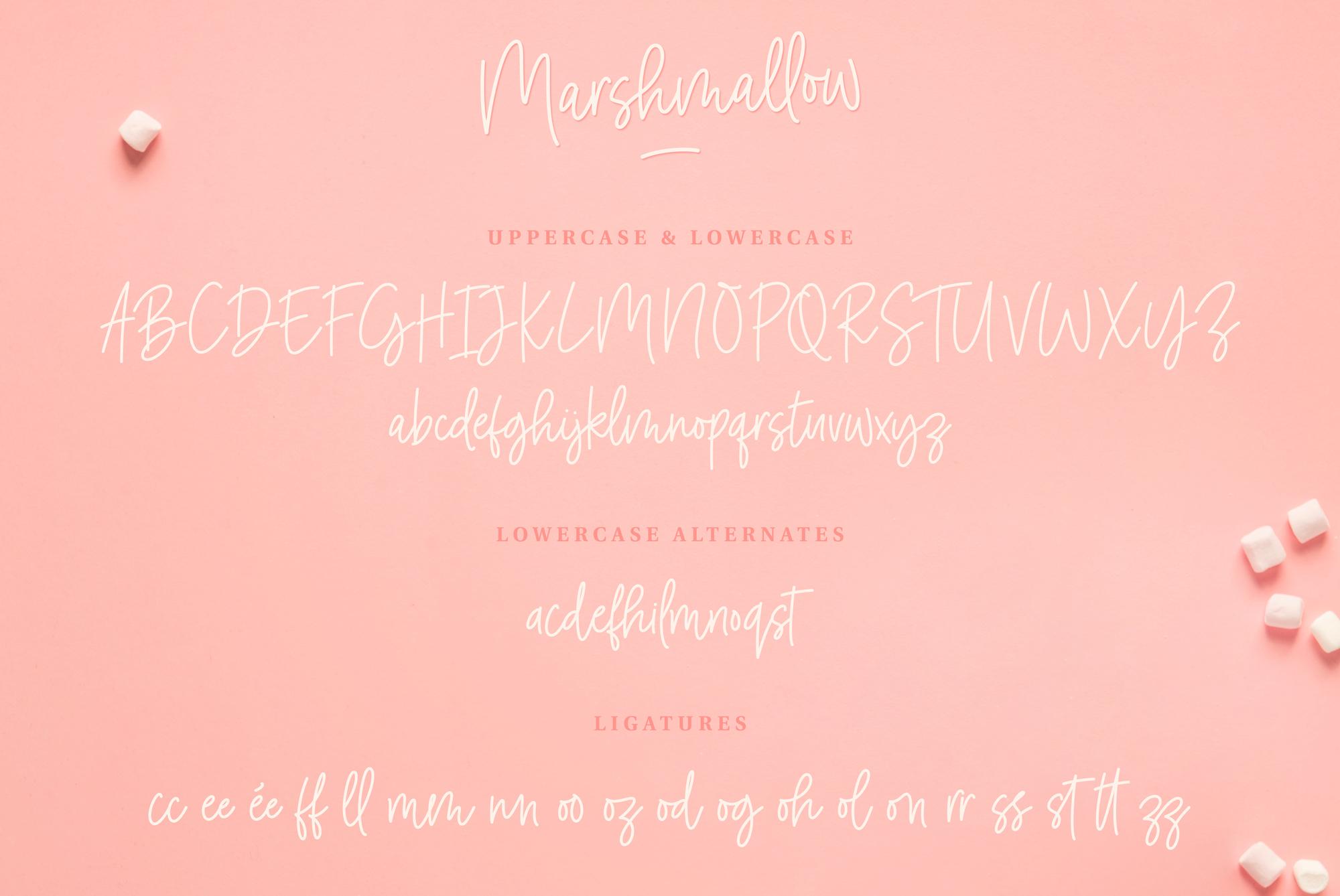 Marshmallow Handwritten Font example image 7