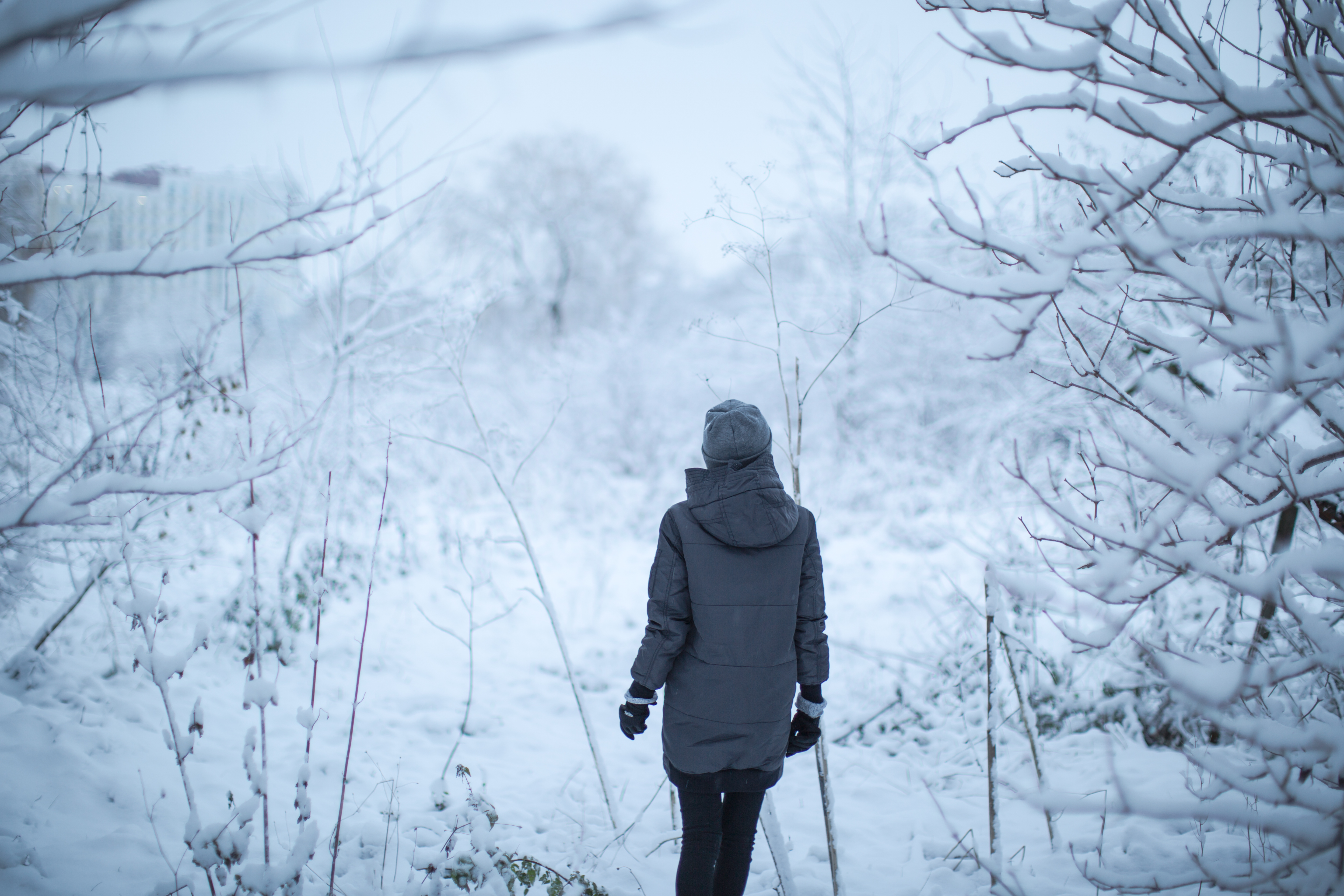 Girl playing in the woods during winter time	 example image 1