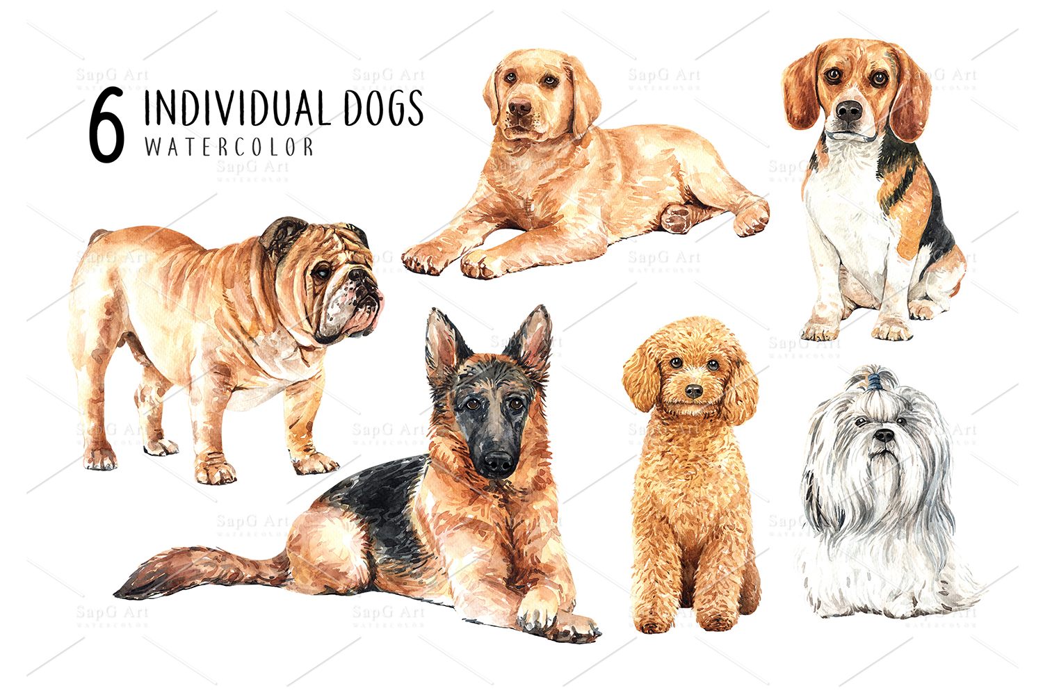 Dog watercolor clipart, Pet clip arts, Dog Set F example image 2