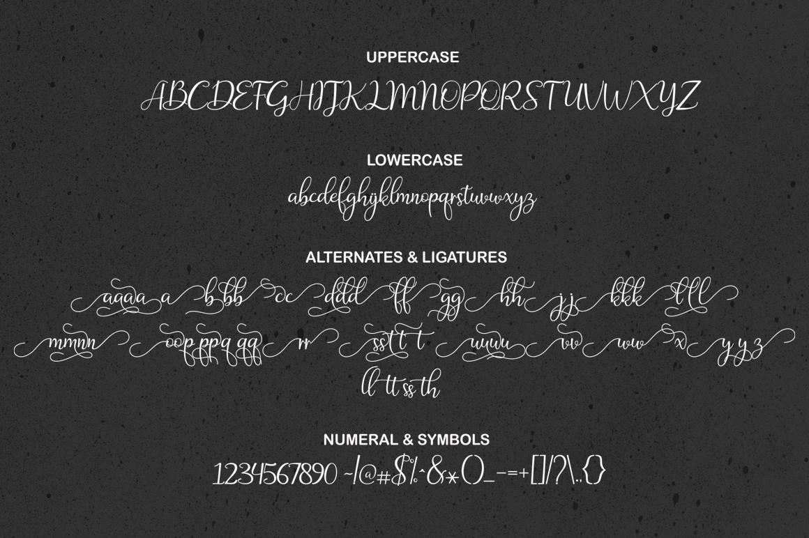 The Amazing Font Bundle - Vol I example image 12