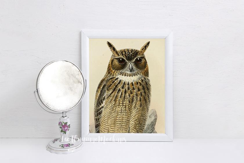 White Frame Mockup 8x10 stock photo png jpg example image 3