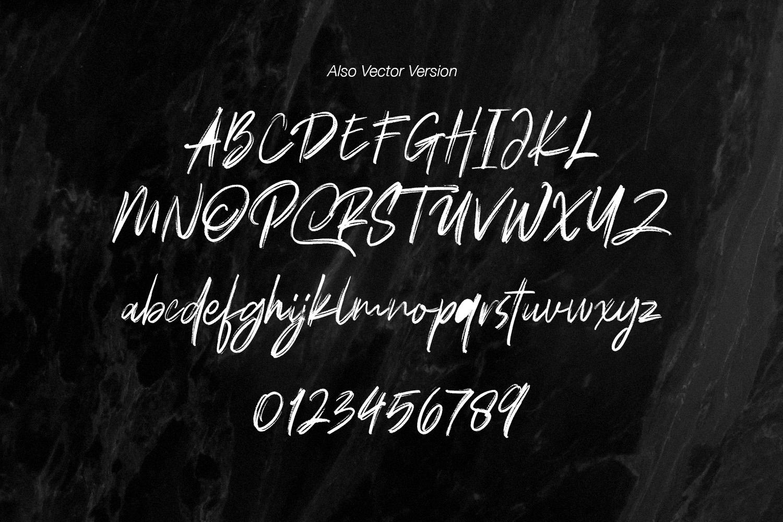 Polandic SVG Brush Font example image 10