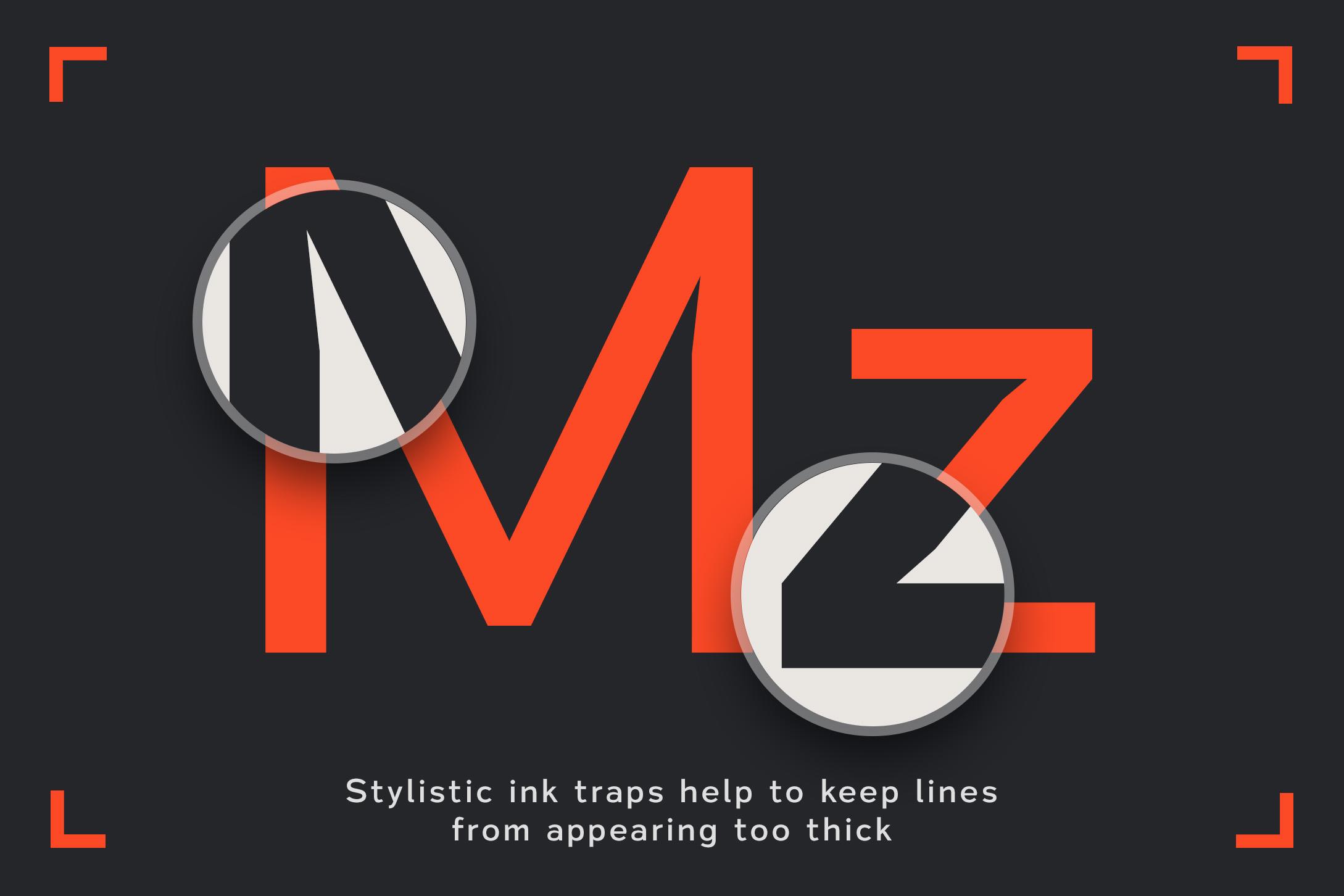 Vitala - A Workhorse Sans-Serif example image 2