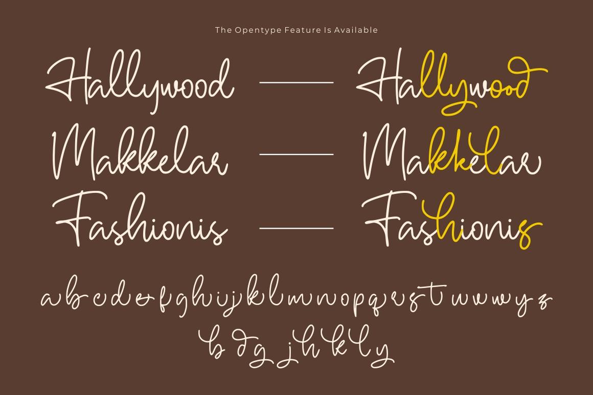 Hallywood - Handwritten Script Font example image 10
