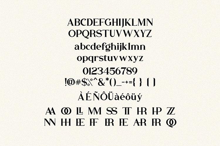 Buffallo Elegant Serif Font example image 4