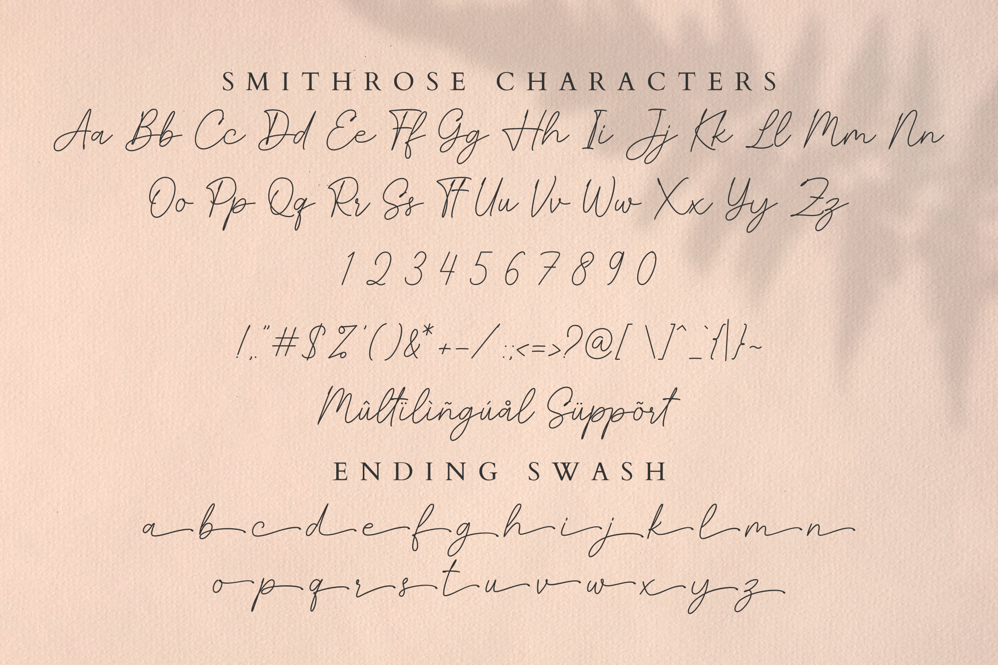 Smithrose - Signature Typeface example image 14