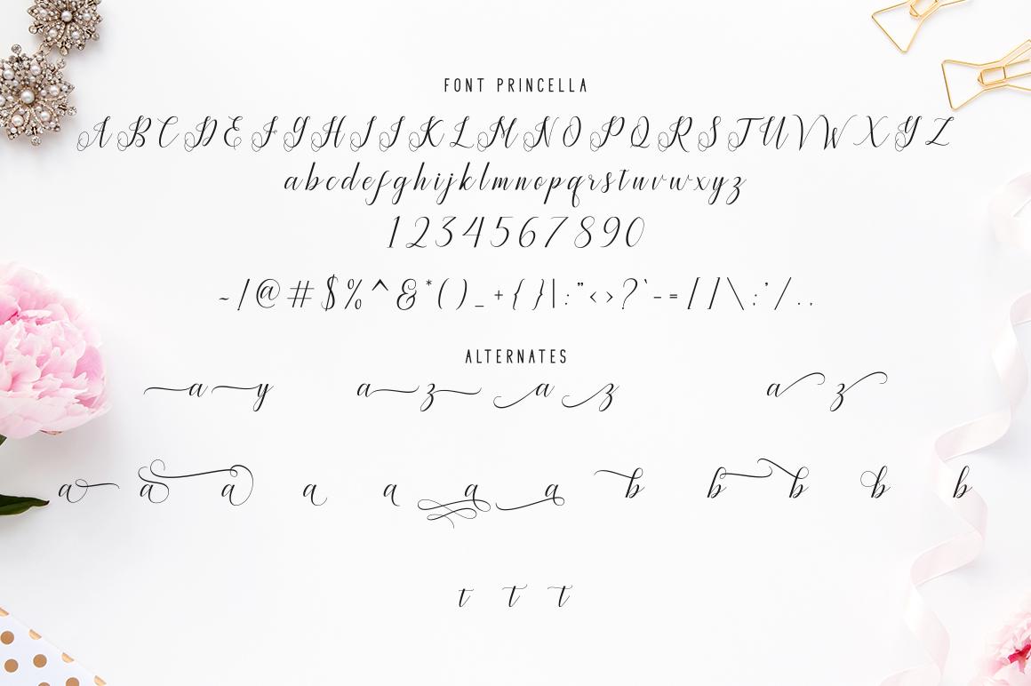 Princella Script | 5 Font example image 11