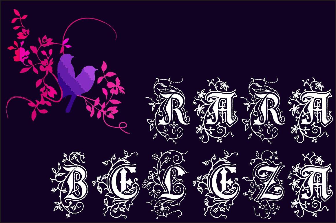 Rara Beleza example image 1
