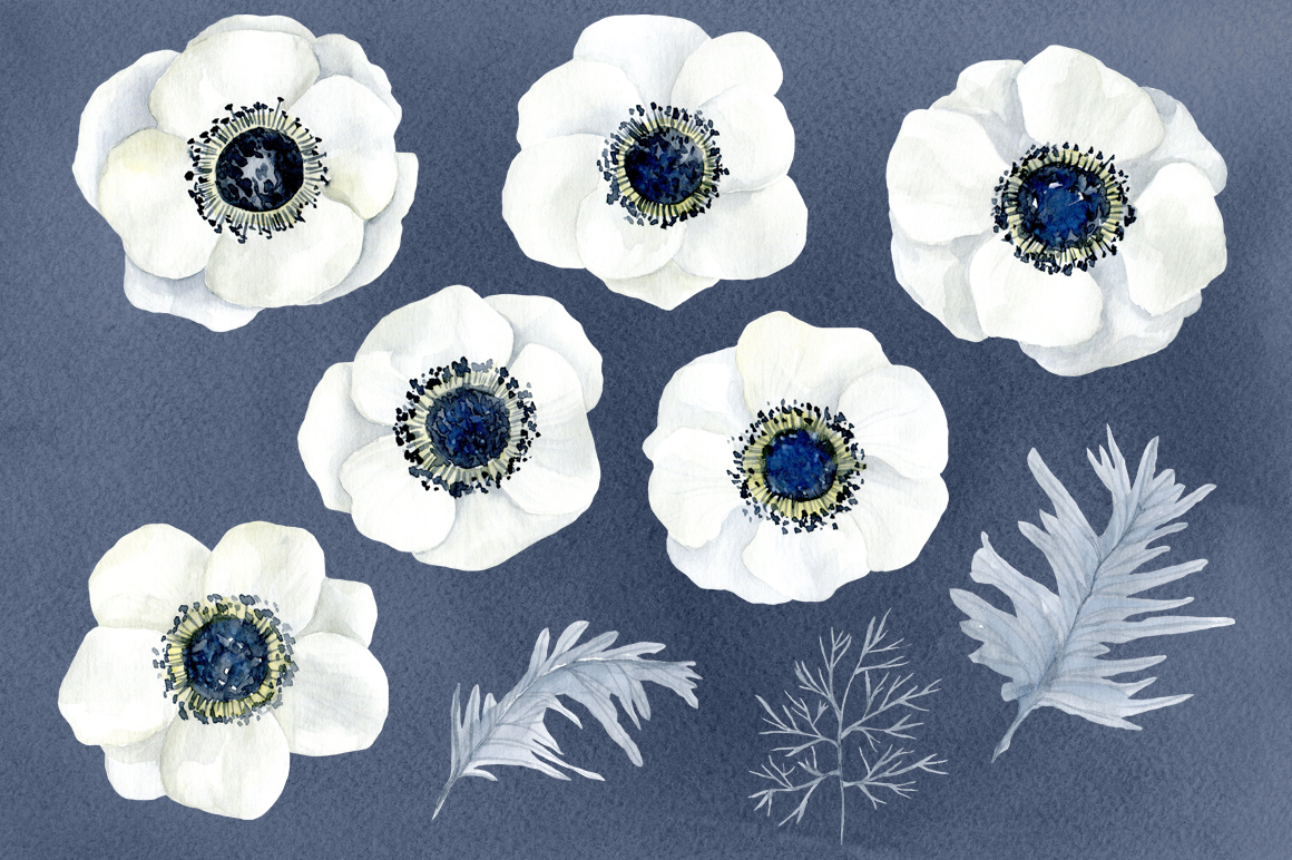 Watercolor anemone white flowers example image 3