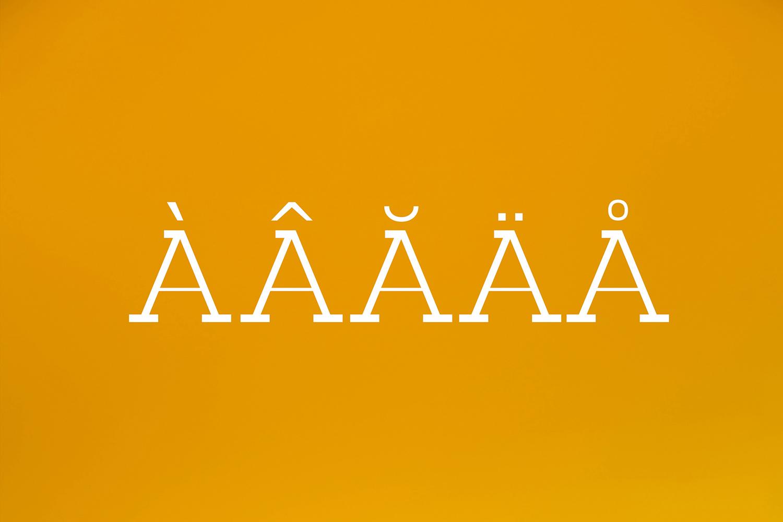 Basel Slab Serif Font Family example image 10
