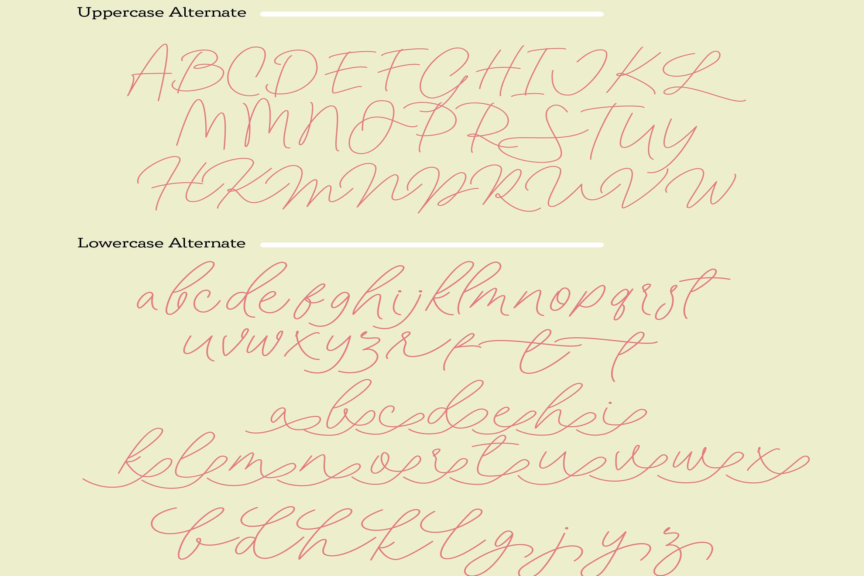 Filia Trio - Script, Sans, and Bold example image 11