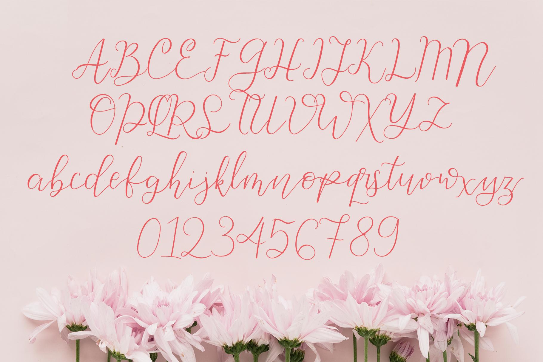 Beauty - Classy Script example image 6