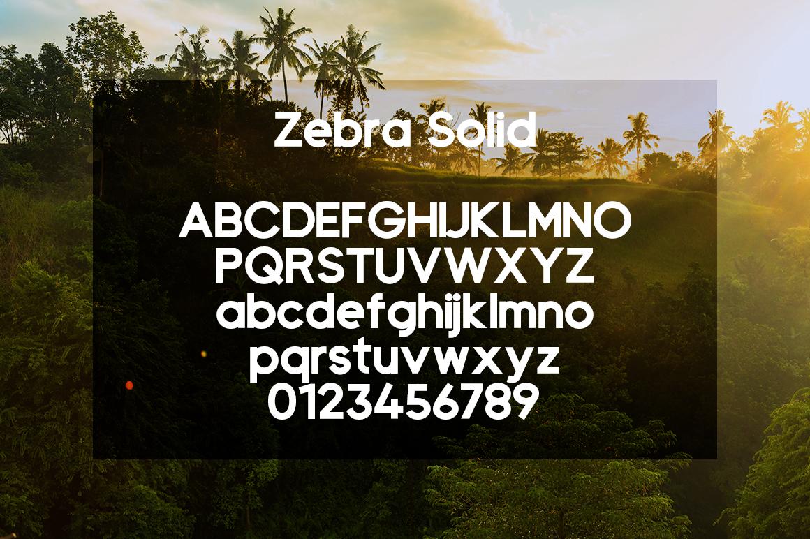Zebra example image 3