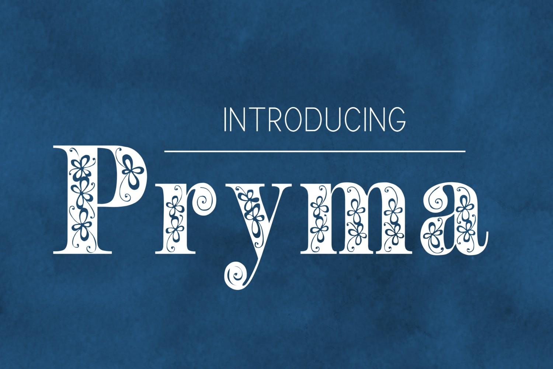 Pryma font example image 2