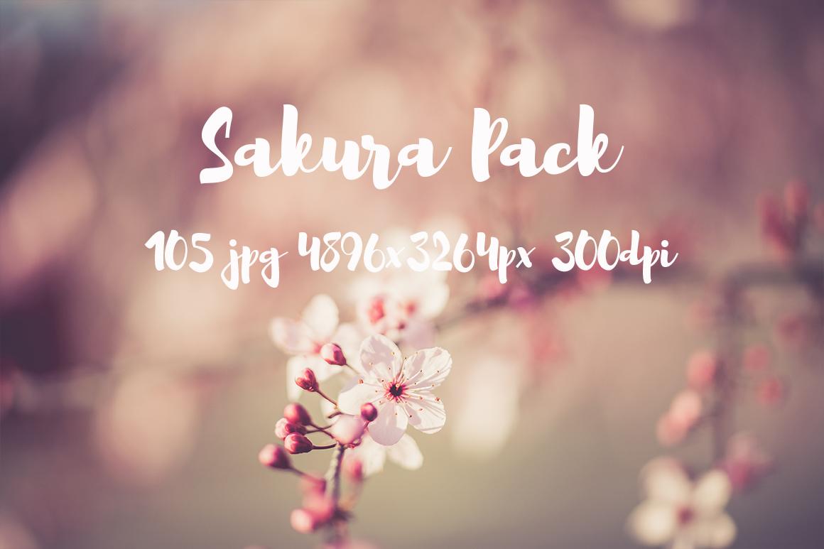 sakura photo pack example image 5