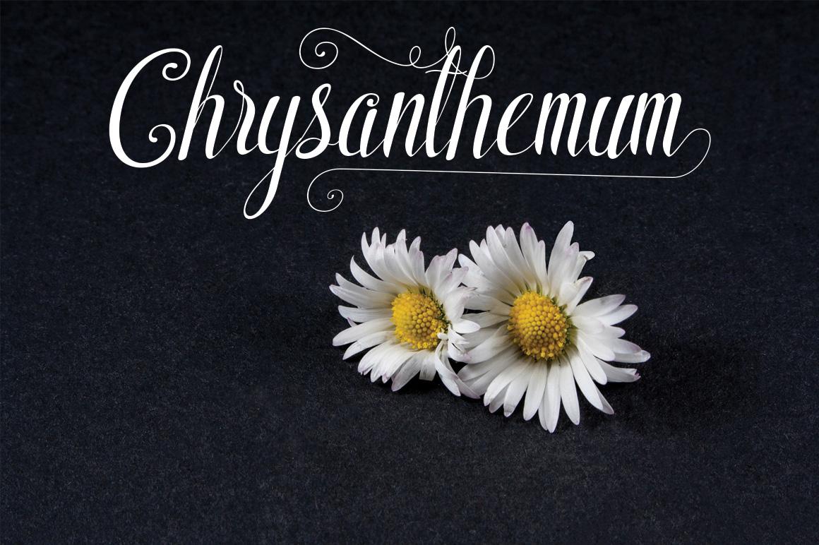 Shyntia Bella example image 2