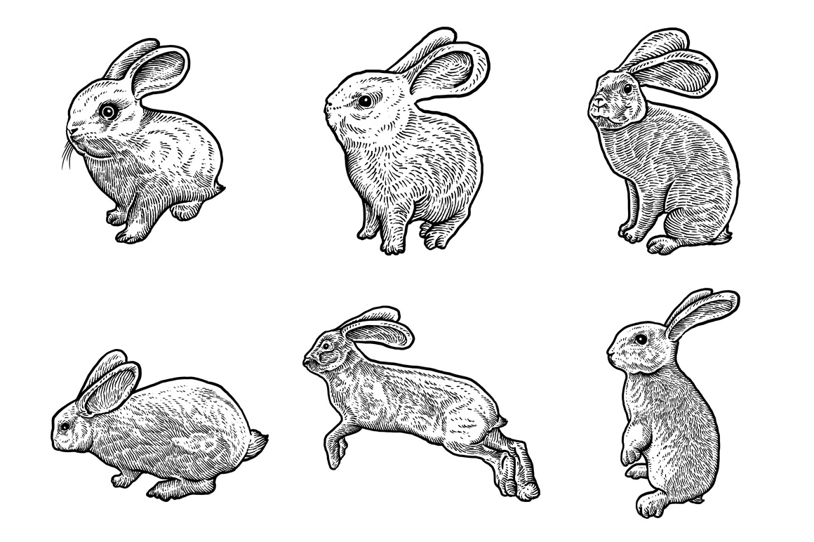 Rabbits Collection Art example image 3
